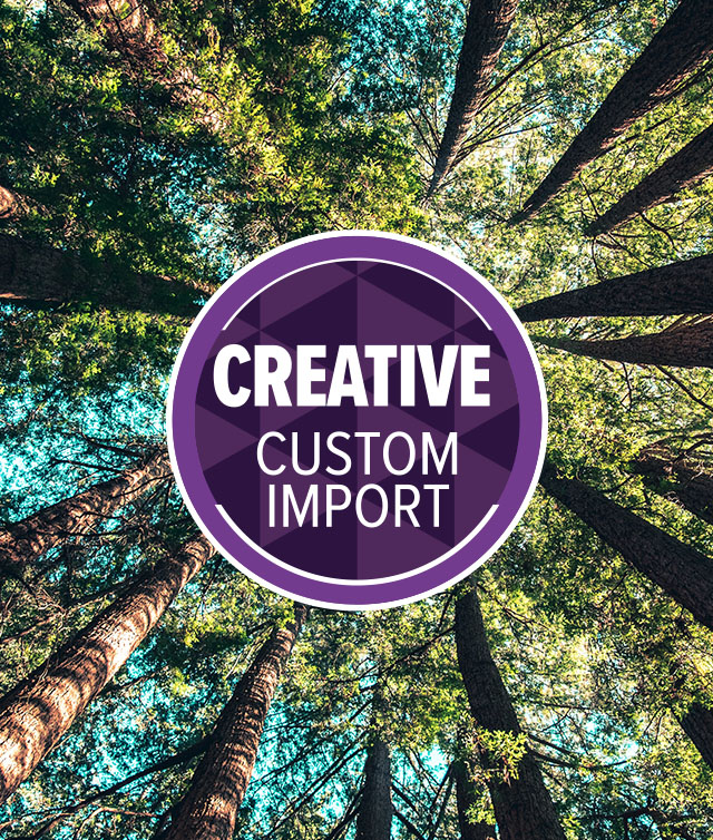 Creative Custom Program
