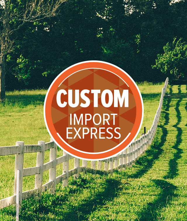Custom Import Express Program